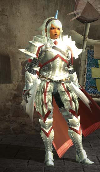 女騎士装備の正面画像