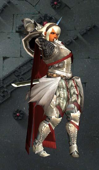 聖騎士見た目装備のポーズ画像