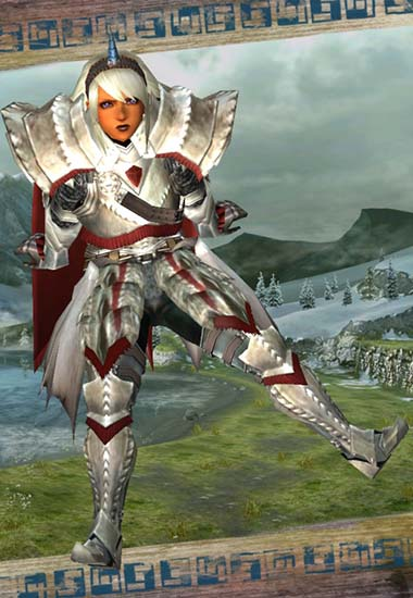 女聖騎士風な見た目装備の画像8