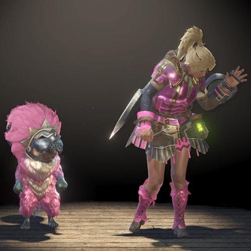 ダマスク胴装備とクシャナ腰装備でピンクカラーの見た目装備